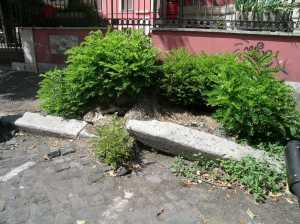 Via S. Quintino Centro anziani