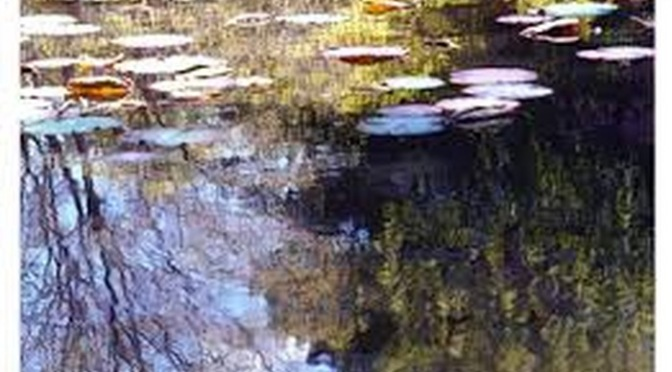 """8-9 giugno """"Riflessi di un giardino – Emozione Monet"""" Mostra Fotografica presso Palazzo del Freddo Fassi"""