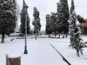 Parco di Via Carlo Felice - Amici Parco di Via Carlo Felice