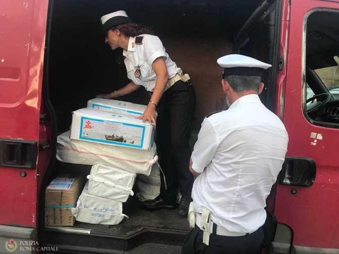 Porta Maggiore, Polizia Locale sequestra 110 kg di pesce