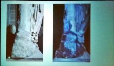 Figura 3: Operazioni di ricostruzione operate nei secoli scorsi per riparare parti di marmo andte perse