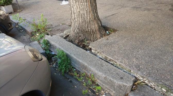 Marciapiedi che si innalzano all'Esquilino, fenomeni di bradisismo? No, solo alberi senza manutenzione