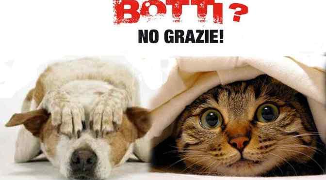 Roma, 31 dicembre 2018: Ordinanza anti botti e fuochi d'artificio della Sindaca