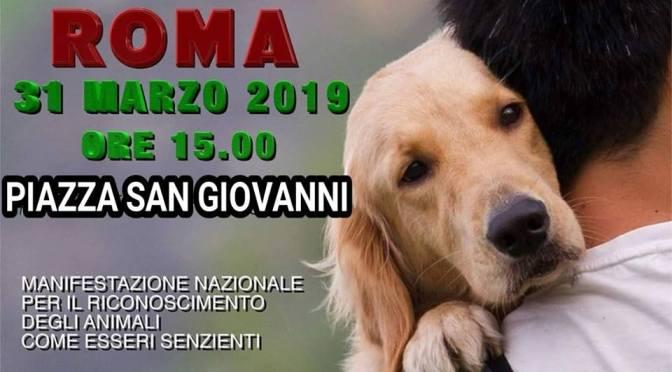 """31 MARZO Manifestazione Diritti Animali""""SOGGETTInonOGGETTI"""" a Piazza san Giovanni"""