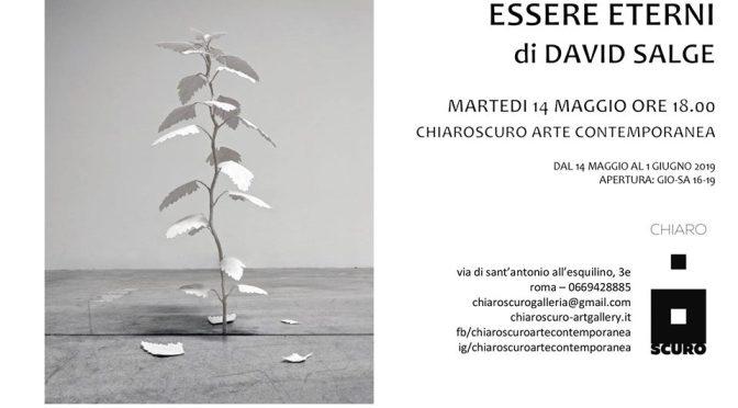"""14 – 25 maggio 2019 """"Essere Eterni di David Salge"""" alla galleria Chiaroscuro Arte Contemporanea"""