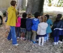 Tempio di Minerva Medica: Giornata di scuola all'aperto