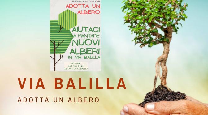 """""""Adotta un albero"""" iniziativa degli abitanti di via Balilla per piantare nuovi alberi"""